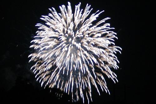 本荘花火2011.7.30572