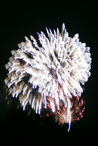 本荘花火2011.7.30584
