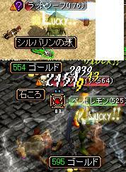 20080113155548.jpg