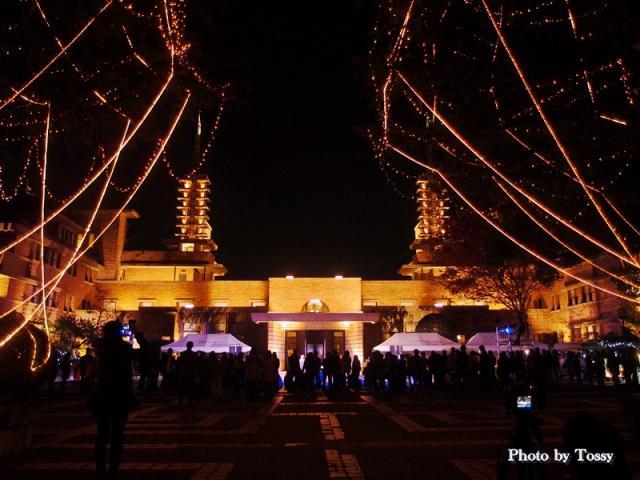 甲子園会館ライトアップ 正面
