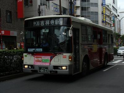 DSC04706-m.jpg