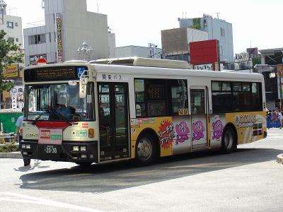 DSC06302.jpg