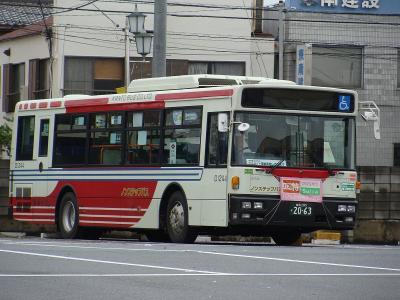 DSC08704.jpg