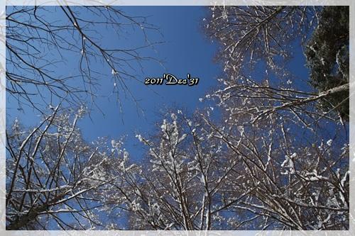 IMG_4638_20111231210247.jpg
