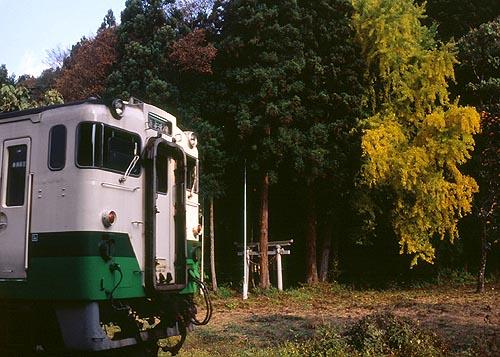 ichou022.jpg