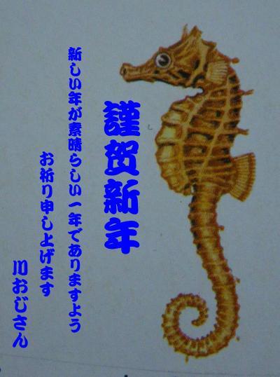 IMGP1193-crop_convert_20120102233930.jpg