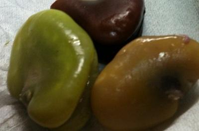 赤い空豆-2