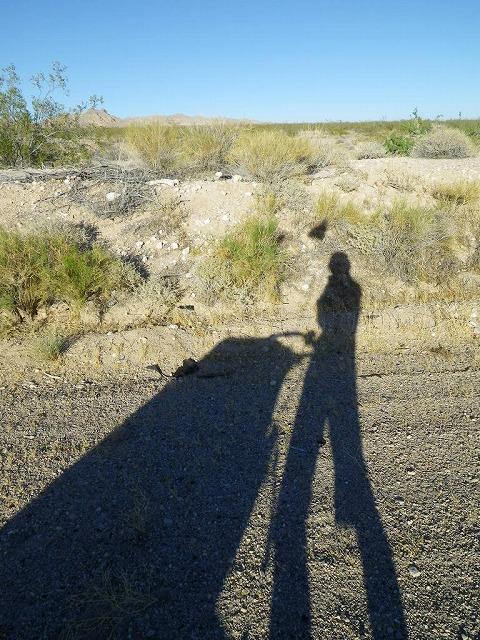 shadow_runner