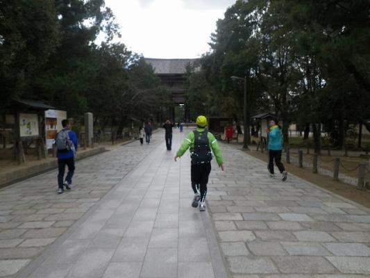 IMGP3846.jpg