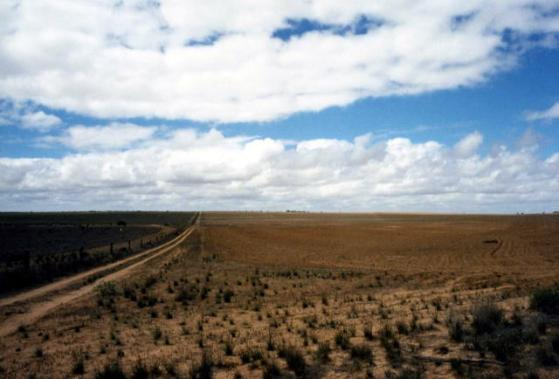 nullarbor_plain3.jpg