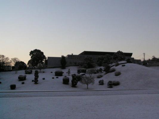 snowymorning2_20120126162639.jpg