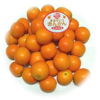 『完熟金柑まるかじり』