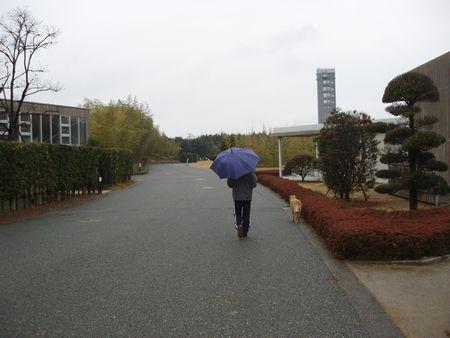 雨が降ってきちゃいました。