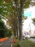 県道浦所バイパス線