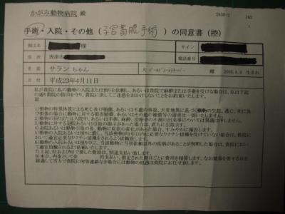 2011_0407邱頑