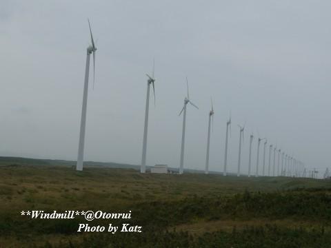 オトンルイ風力発電所 (3)