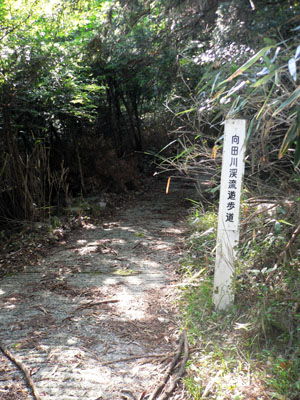20070608_04