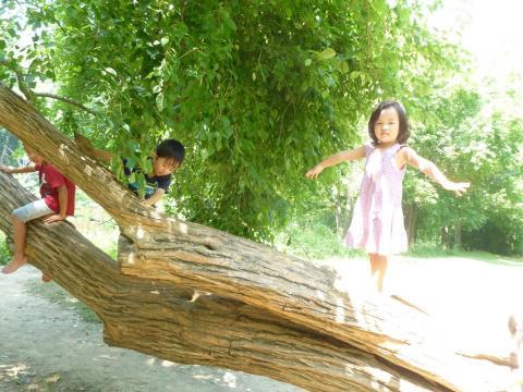 picnic@Scioto+8-17-2011+042_convert_20110821092438.jpg