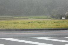 台風^^;