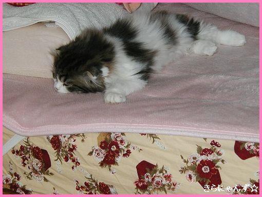ルイ、ベッドの上・1