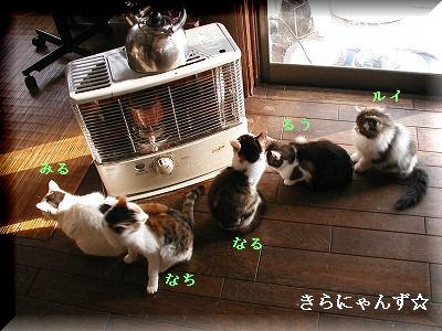 猫とストーブ・2