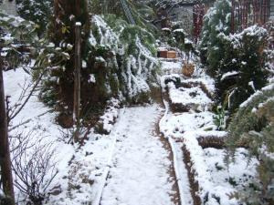 2008-01-29_01.jpg