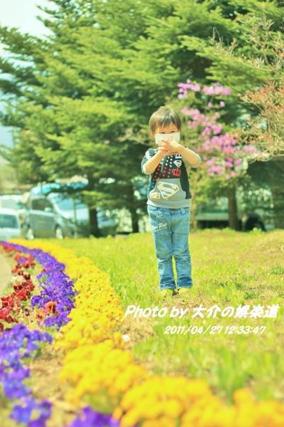 IMG_4189 - コピー (400x600)