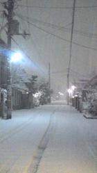 2012.2.18雪