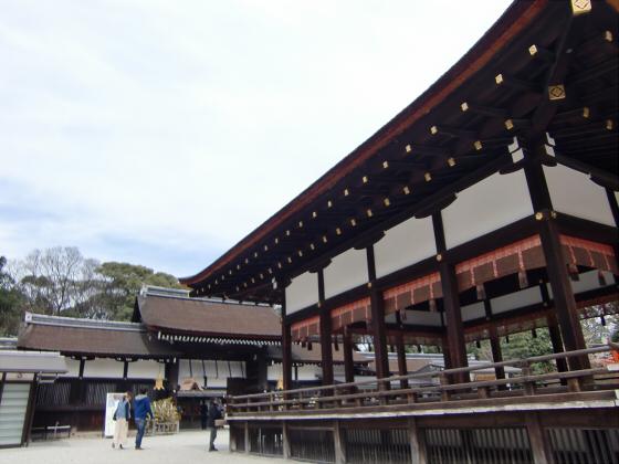 京都の桜2012-下鴨神社08