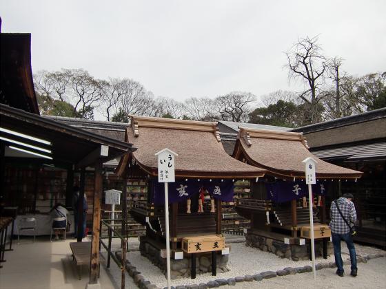 京都の桜2012-下鴨神社09