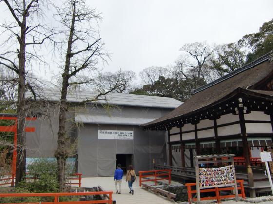 京都の桜2012-下鴨神社13
