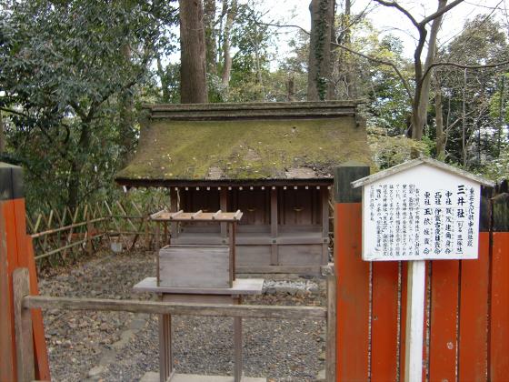 京都の桜2012-下鴨神社19