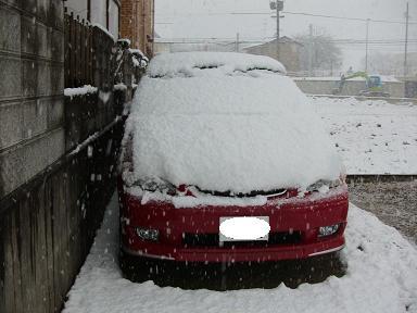 車も真っ白…