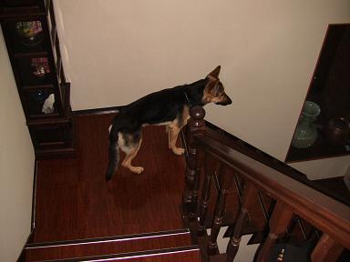 階段にて…