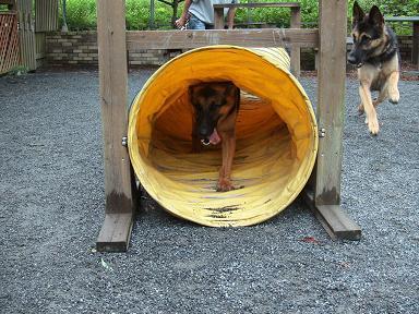 トンネルで…
