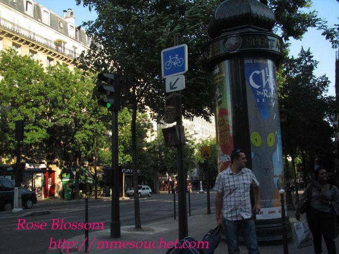 paris201106011.jpg