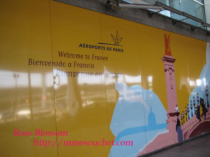 parisboard201106012.jpg