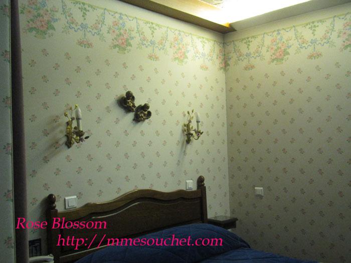room20110601.jpg
