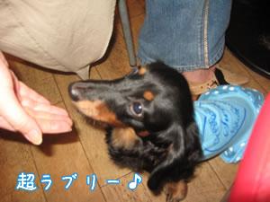 20071015_05.jpg