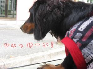 20071022_01.jpg