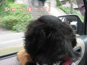 20071022_02.jpg
