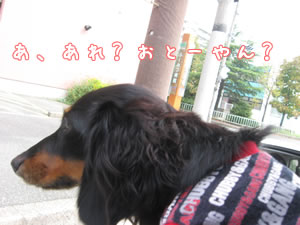 20071022_03.jpg