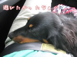 20071022_04.jpg