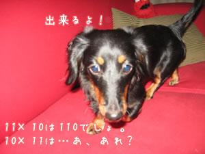 20071112_02.jpg