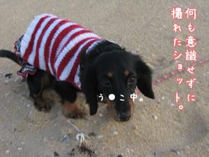 20071210_09.jpg