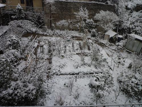笹丘三丁目食堂のお庭