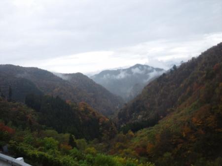 20111106aIMG_0003.jpg