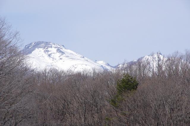 2012-2-13-3s.jpg