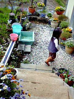 毎年母の日にはガーデニング用のお花を持っていきます。