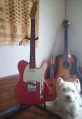 レッドギター